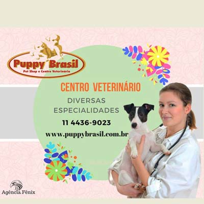 puppybrasil400